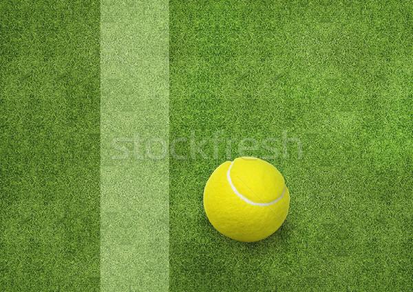 Tennisbal naast rechter lijn gras sport Stockfoto © designsstock
