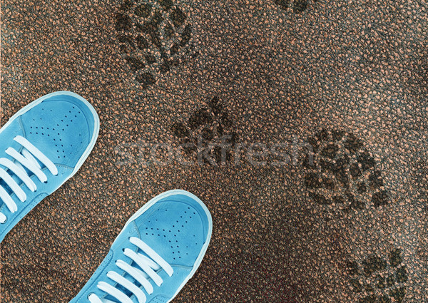 Blue sport shoe on street  Stock photo © designsstock