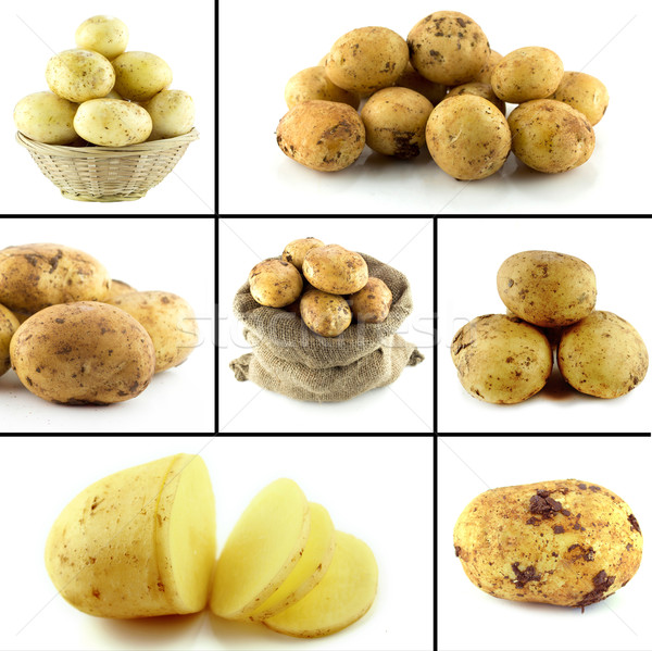 Saudável alimentos orgânicos conjunto fresco batatas natureza Foto stock © designsstock