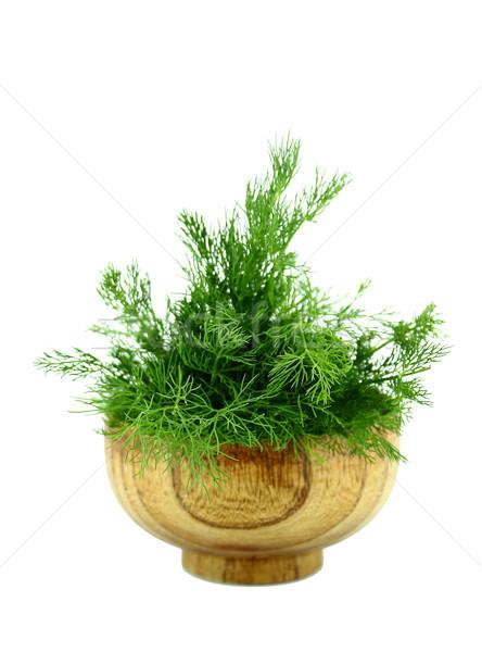 bunch dill herb Stock photo © designsstock