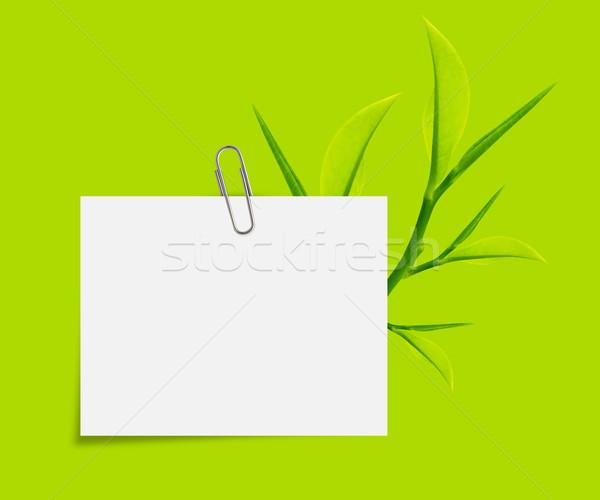 Schrijfpapier witte paperclip groene bladeren groene Stockfoto © designsstock