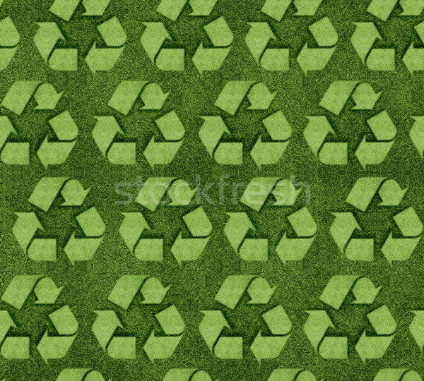 Recycler signe herbeux herbe design Photo stock © designsstock
