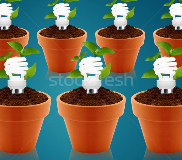 Green energy Stock photo © designsstock