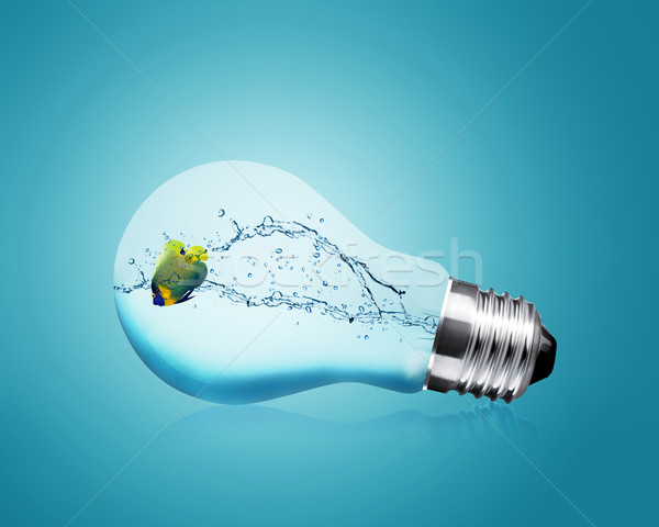 Anglefish jumping into light bulb Stock photo © designsstock