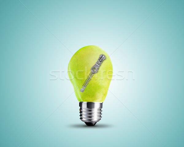 light bulb concept Stock photo © designsstock