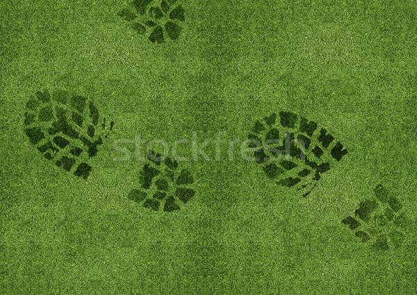 Shoe print on green grassland Stock photo © designsstock
