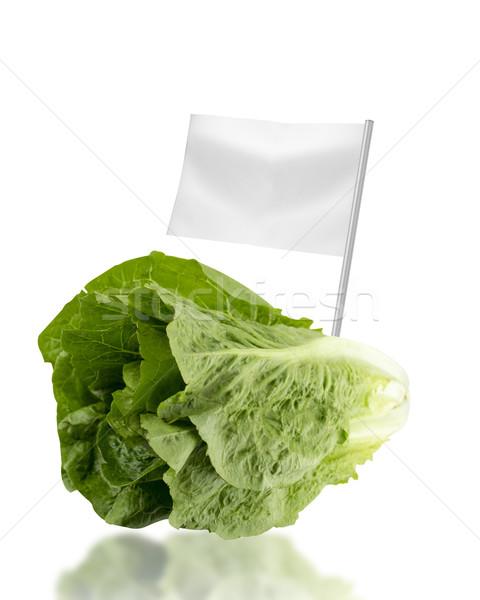 Saudável alimentos orgânicos fresco alface bandeira Foto stock © designsstock