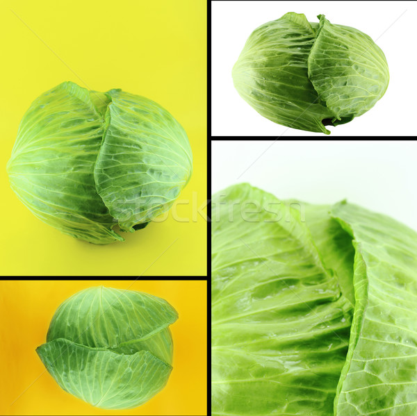 Saudável alimentos orgânicos conjunto fresco verde repolho Foto stock © designsstock
