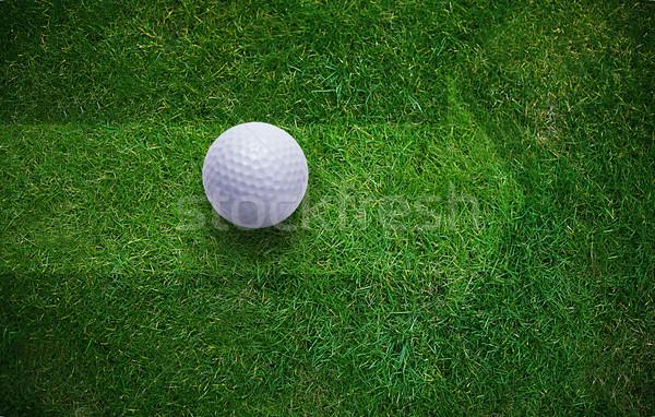 Golf Background Stock photo © designsstock