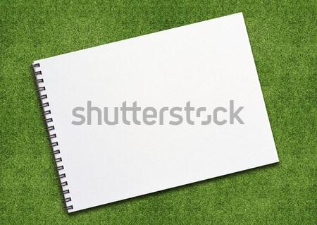 Notebook on grassland Stock photo © designsstock