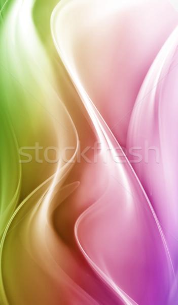 Elegante projeto abstrato beleza cor ondas Foto stock © Designus