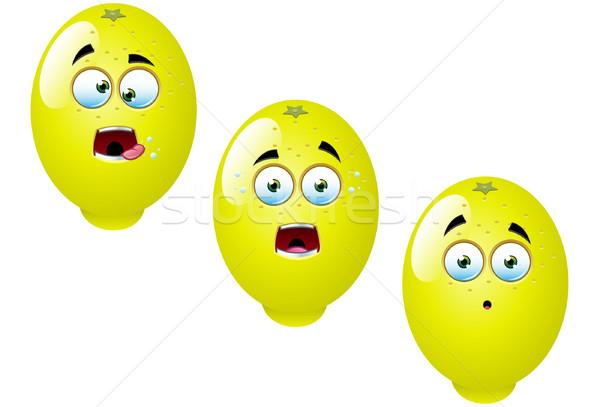 Rajz citrom gyümölcs szett jókedv vektor Stock fotó © DesignWolf