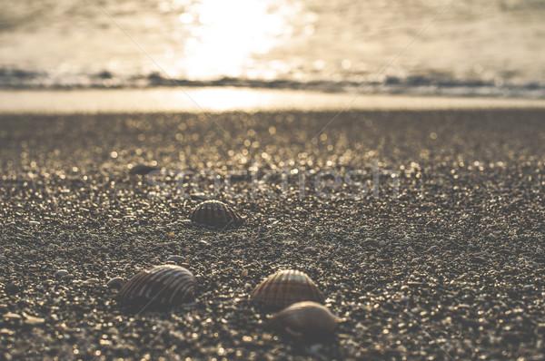 Plage gibraltar mer été océan sable Photo stock © deyangeorgiev