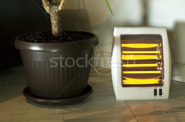 Elektromos fűtés halogén virágcserép márvány otthon Stock fotó © deyangeorgiev
