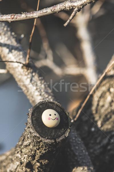 Uśmiech ikona miniatura drzewo gałązka projektu Zdjęcia stock © deyangeorgiev