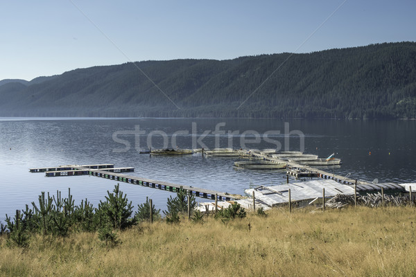 Cages for fish farming Stock photo © deyangeorgiev