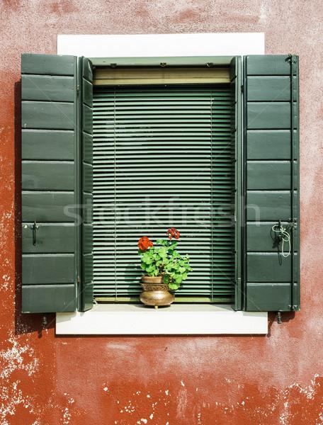 ベニスの 窓 花 緑 赤 壁 ストックフォト © deyangeorgiev