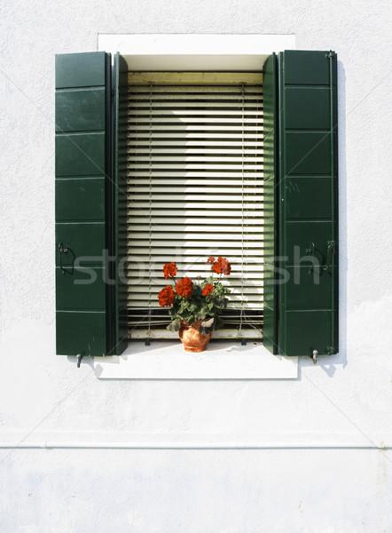 Velencei ablakok virágok zöld ablak fehér Stock fotó © deyangeorgiev