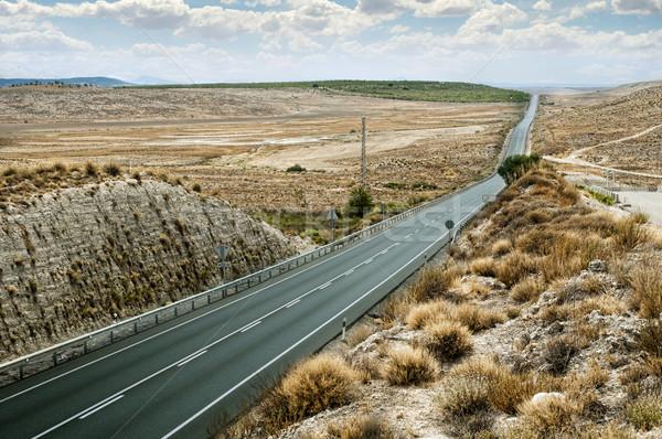 Asphalt road and white line marking Stock photo © deyangeorgiev