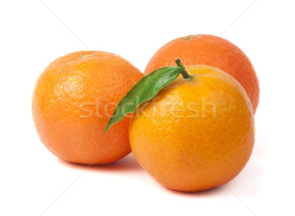 Group mandarins white isolated studio shot Stock photo © deyangeorgiev