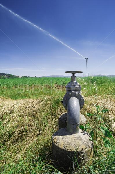 Agricultural irrigation systems Stock photo © deyangeorgiev