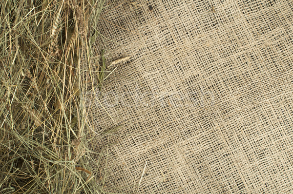 Hay on burlap Stock photo © deyangeorgiev