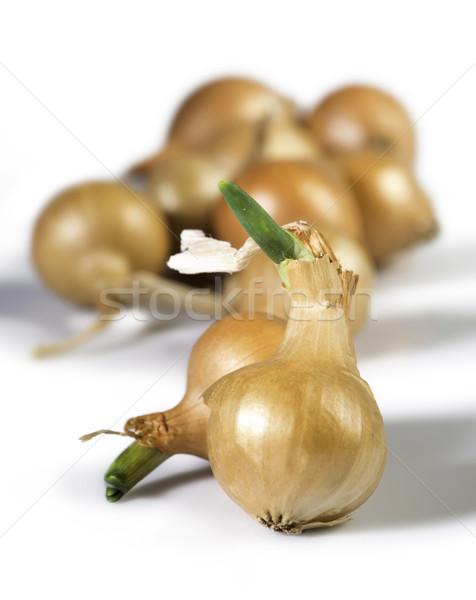 Small onions Stock photo © deyangeorgiev