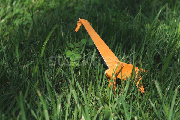 оригами жираф оранжевый цвета зеленый луговой Сток-фото © deyangeorgiev