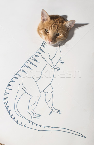 Strong cat conception drawing Stock photo © deyangeorgiev