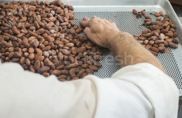 Handen natuur chocolade witte Stockfoto © deyangeorgiev