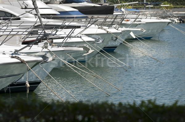 Yachts moored in marina Stock photo © deyangeorgiev