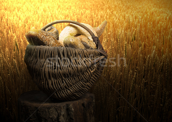 Breads and wheat cereal crops Stock photo © deyangeorgiev