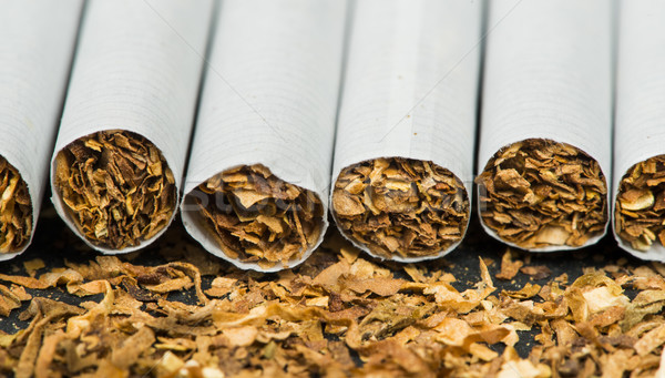 Stock photo: Arranged in a row cigarettes