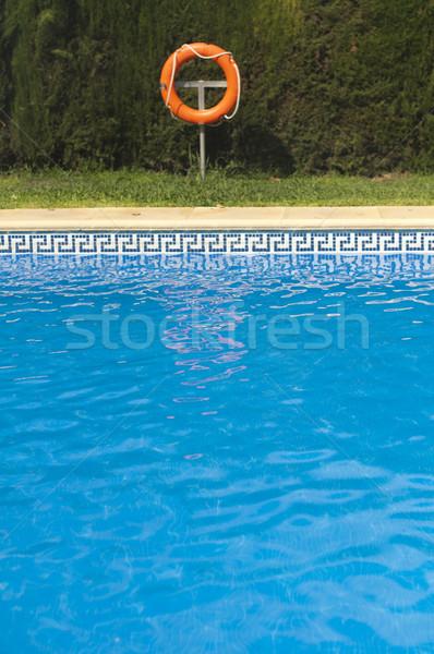 Boa piscina natura luce sfondo estate Foto d'archivio © deyangeorgiev