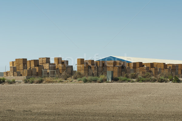 Factory production of pallets Stock photo © deyangeorgiev