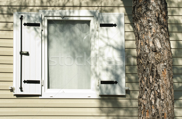 Window with wooden shutters Stock photo © deyangeorgiev
