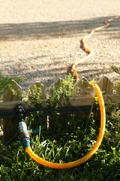 Garden watering hose Stock photo © deyangeorgiev