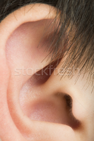 Human ear Stock photo © deyangeorgiev