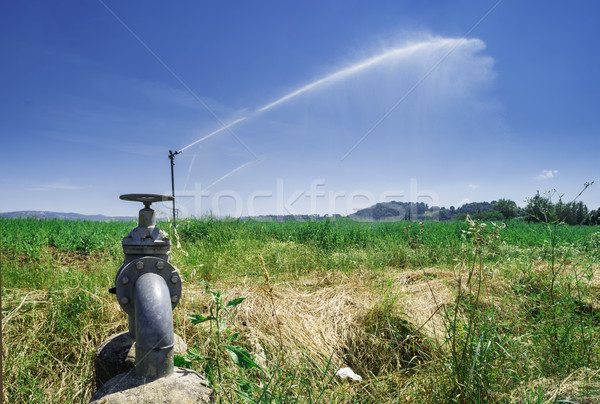 Stock photo: Agricultural irrigation systems