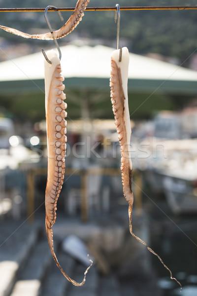 Polpo barche corda alimentare natura estate Foto d'archivio © deyangeorgiev