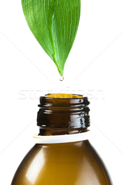 Green leaf and drop over a tube of cosmetics Stock photo © deyangeorgiev