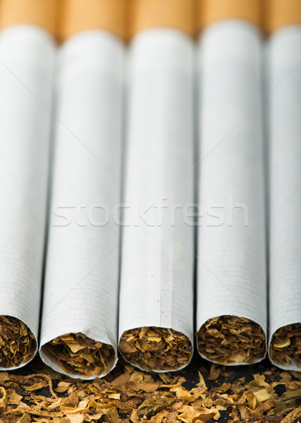 Arranged in a row cigarettes Stock photo © deyangeorgiev