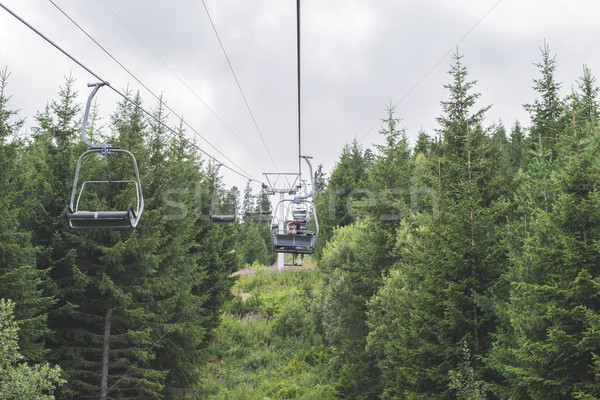 Lift in the mountain. Fir forest. Summer time Stock photo © deyangeorgiev