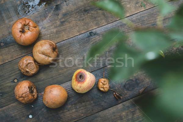 гнилой яблоки древесины день свет продовольствие Сток-фото © deyangeorgiev
