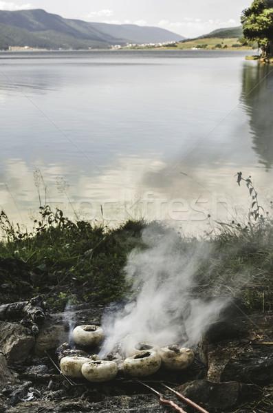 Mushrooms grilled on a coals in nature Stock photo © deyangeorgiev