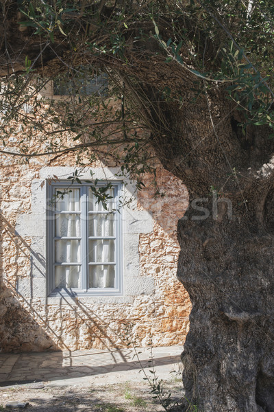 Typical Greek house Stock photo © deyangeorgiev
