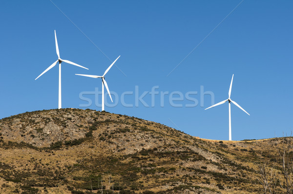 Wind generators on the top Stock photo © deyangeorgiev