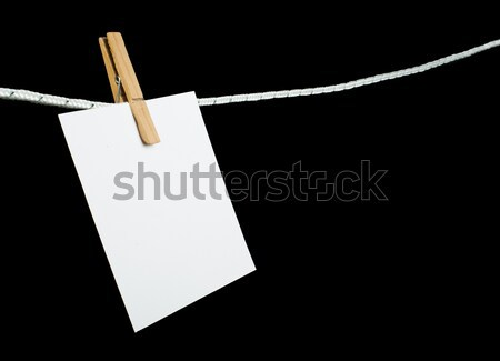 Levélpapír kötél izolált stúdiófelvétel papír fa Stock fotó © deyangeorgiev