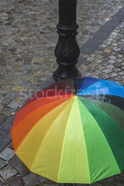 Tarka esernyő esős nap tavasz nap Stock fotó © deyangeorgiev