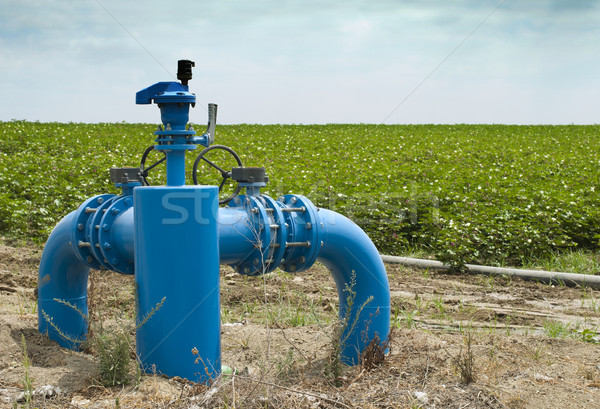 Irrigation systems Stock photo © deyangeorgiev